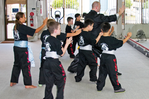 Kung Fu Dingley Kids classes